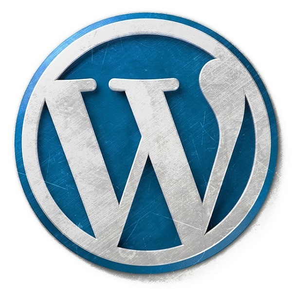 WordPress Pro Tips - The Quick And Dirty Guide